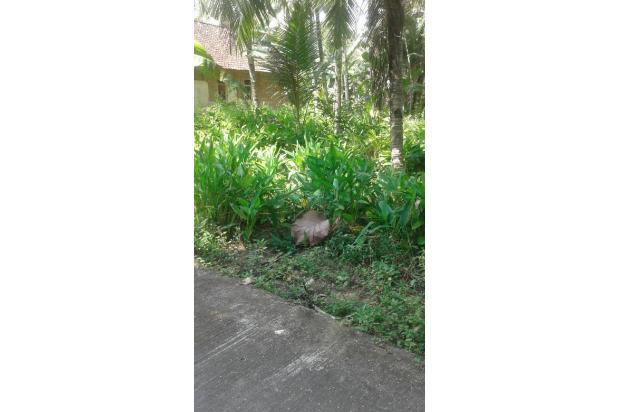 Tanah Murah Dijual, Cocok Untuk Investasi Daerah Bendungan, Kulon Progo 15829193