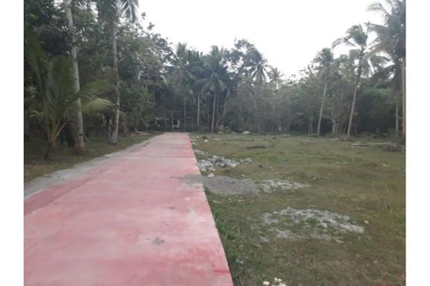 Beli Tanah Kaveling, Jual Saat Bandara Wates Beroperasi: UNTUNG 12899838