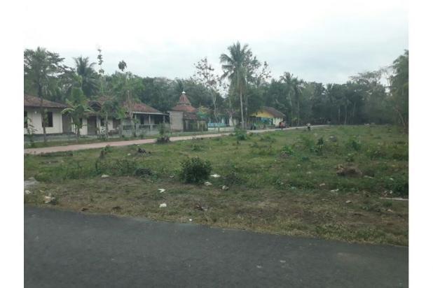 Beli Tanah Kaveling, Jual Saat Bandara Wates Beroperasi: UNTUNG 12899839
