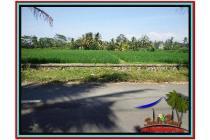Super Spesial Cantik Tanah 1.500 m2 di Ubud Tegalalang E528