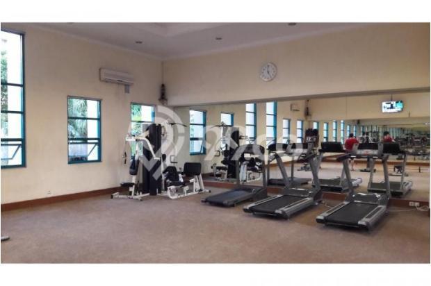 gym centre 7284908