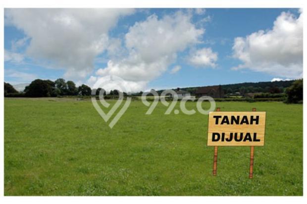 Tanah Kaveling Mangku Jalan aspal di Godean Km. 7: Akses Exit Tol Baru 13244639