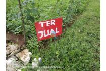 Tanah Kavling Wotan Gresik Prospektif Profitable