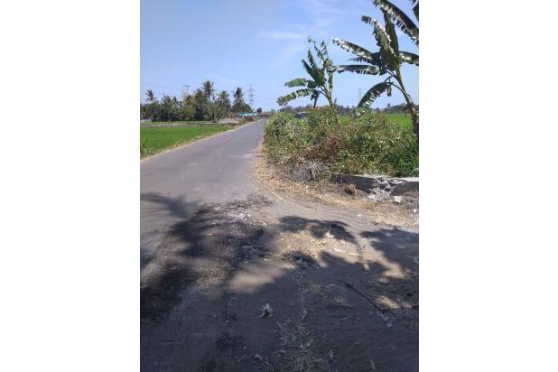 Kaveling Tanah Pendowoharjo Termurah, di Tanah Baru Dekat Kota 15147077