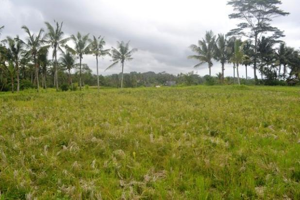 Rp15,8mily Tanah Dijual