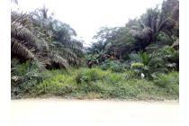 Tanah Dijual Jl.Astra Pandu Senjaya Pangkalan Lada