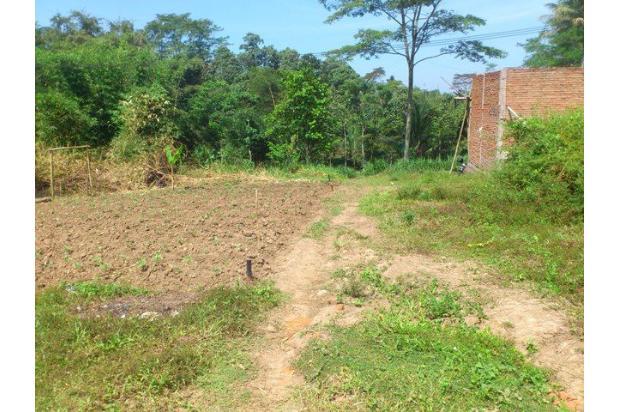 Tanah Murah Malang 16508534