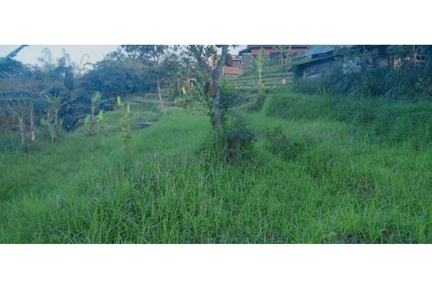 Rp523jt Tanah Dijual