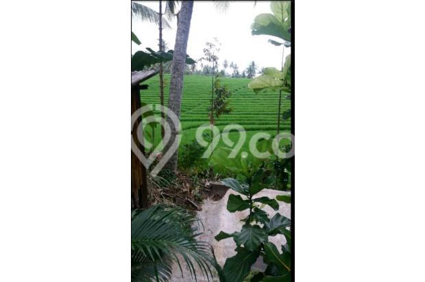 Villa view sawah 10169334