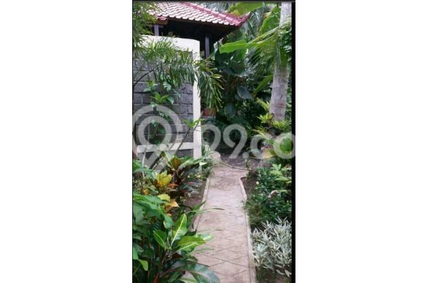 Villa view sawah 10169347