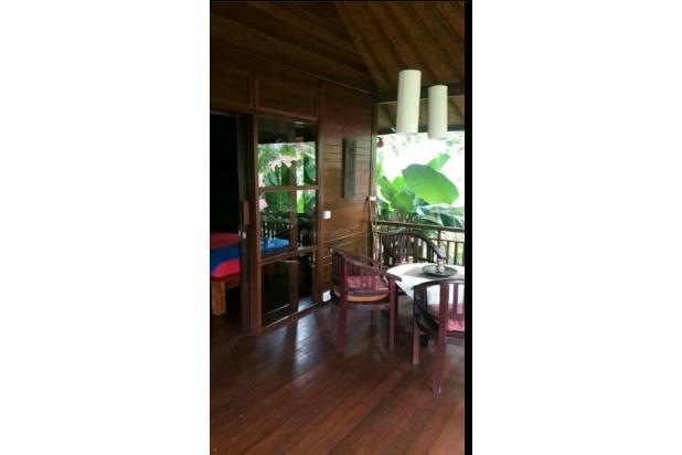 Villa view sawah 10169373