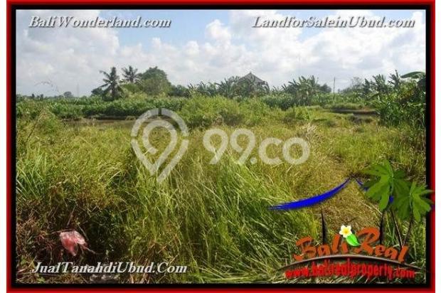 View Sawah link Villa 400 m2 di Ubud Gianyar 18273838
