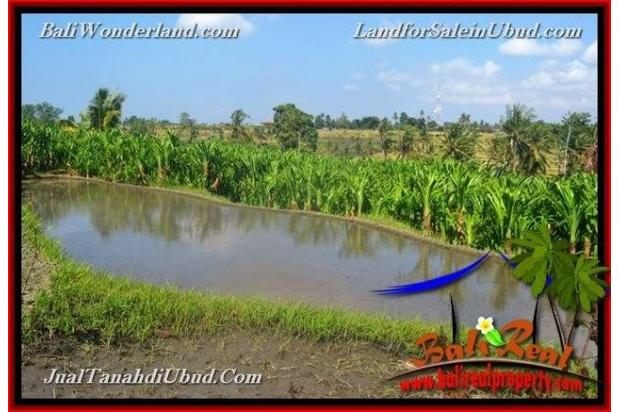 View Sawah link Villa 400 m2 di Ubud Gianyar 18273840