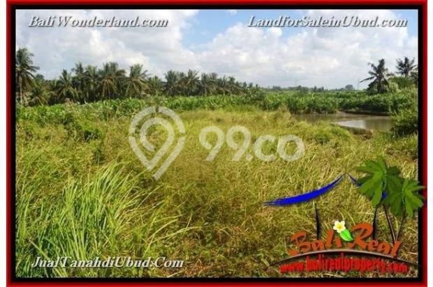 View Sawah link Villa 400 m2 di Ubud Gianyar 18273841