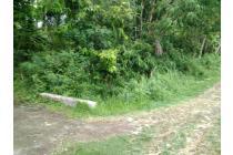 Green Depok: Tanah Matang Bisa Bayar 12x di Wates