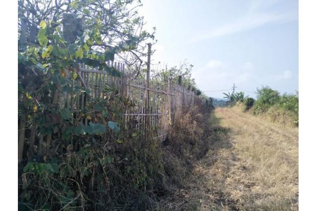Rp6,5mily Tanah Dijual