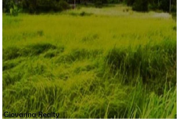 Tanah Luas dengan Lokasi Strategis dekat Hotel Mulia, Nusa Dua - Bali