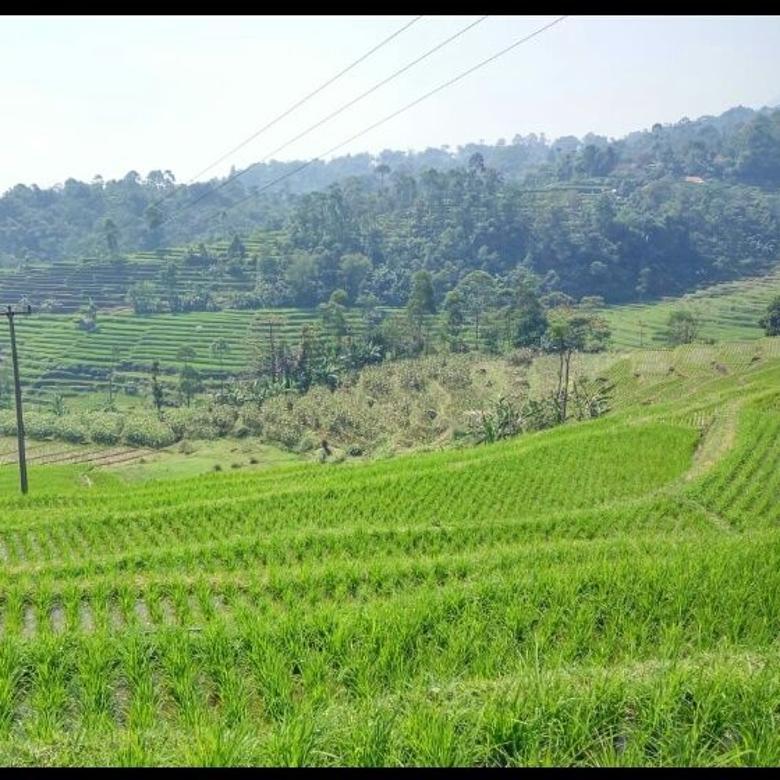 Tanah Murah hanya 142000/meter di Cimaung,banjaran