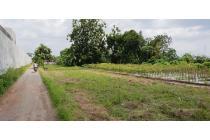 Tanah Murah di Jalan Kayen Raya, Sleman Dekat Lapanga Sono Raya