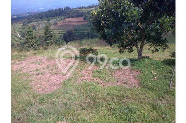 Tanah Dijual Murah View Menarik Dibawah Kaki Gunung Salak 3003766
