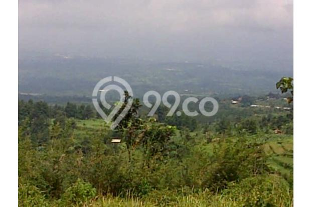 Tanah Dijual Murah View Menarik Dibawah Kaki Gunung Salak 3003767