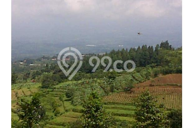 Tanah Dijual Murah View Menarik Dibawah Kaki Gunung Salak 3003769