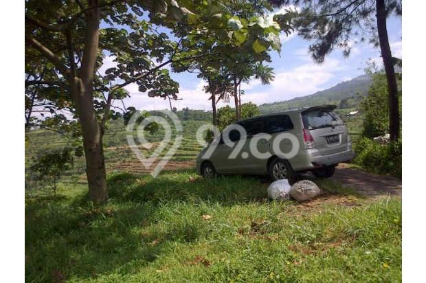 Tanah Dijual Murah View Menarik Dibawah Kaki Gunung Salak 3003770