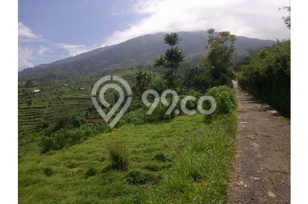 Tanah Dijual Murah View Menarik Dibawah Kaki Gunung Salak 3003773