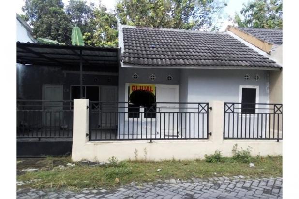 Jual Rumah Jogja OLX, Rumah Murah di Dalam Perumahan