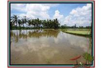 Super Potensial Prospektif Tanah 2.200 m2 di Ubud Payangan #475