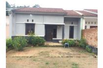Rumah-Banyu Asin-4