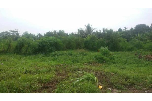 Dijual Tanah di Jalan Kelapa Sawit Tanjung Morawa  2870198