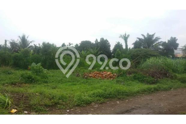 Dijual Tanah di Jalan Kelapa Sawit Tanjung Morawa  2870238