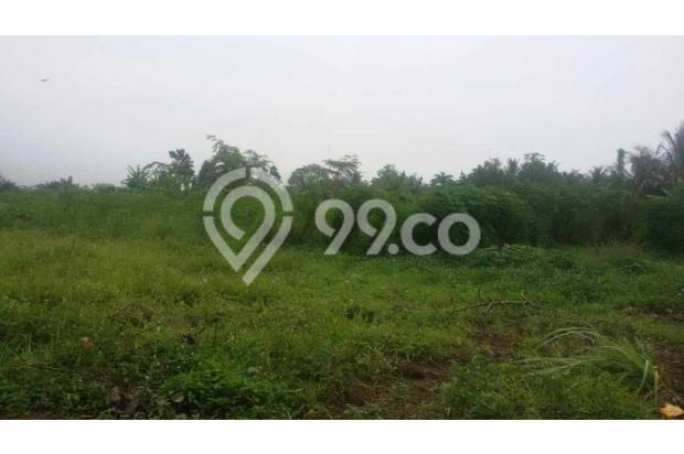 Dijual Tanah di Jalan Kelapa Sawit Tanjung Morawa  2870242