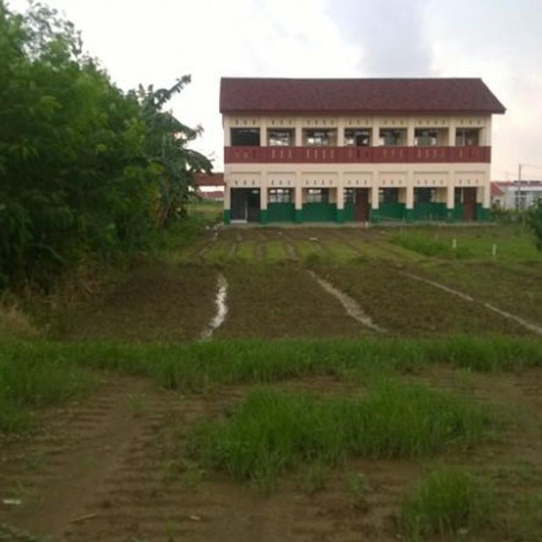 Tanah Darat Depan Perumahan Kedung Pengawas Babelan Bekasi