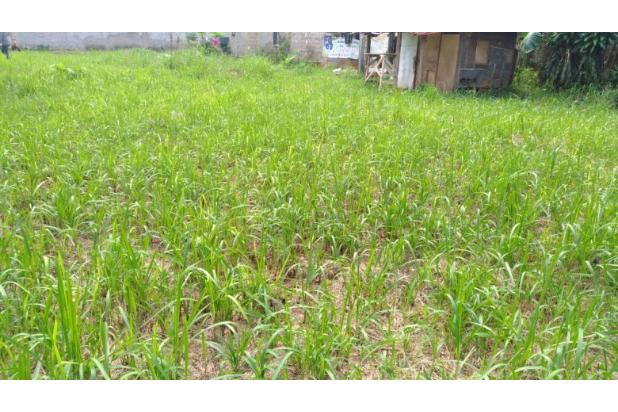 Tanah Kapling Dekat Universitas Pamulang 14317293