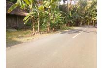 Tanah Murah di Kulon Progo Dekat Bandara NYIA Jogja