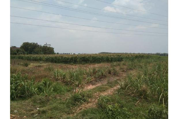 Rp10mily Tanah Dijual