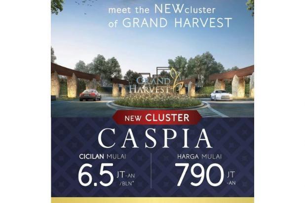 Grand Harvest Cluster Caspia Siap Huni 9913412