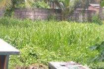 Di jual Tanah plus 12 kontrakan dan 1 unit Rumah di Jababeka Cikarang