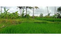 Tanah link villa radius ubud