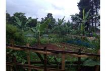 Jual Tanah daerah Cisarua, Tanah murah di Bandung Barat