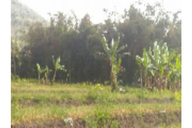 Tanah murah cocok utk perumahan di Mojorejo Batu 12272563