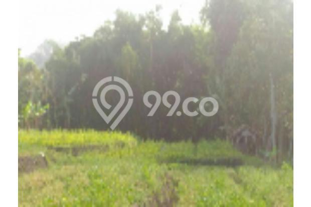 Tanah murah cocok utk perumahan di Mojorejo Batu 12272570