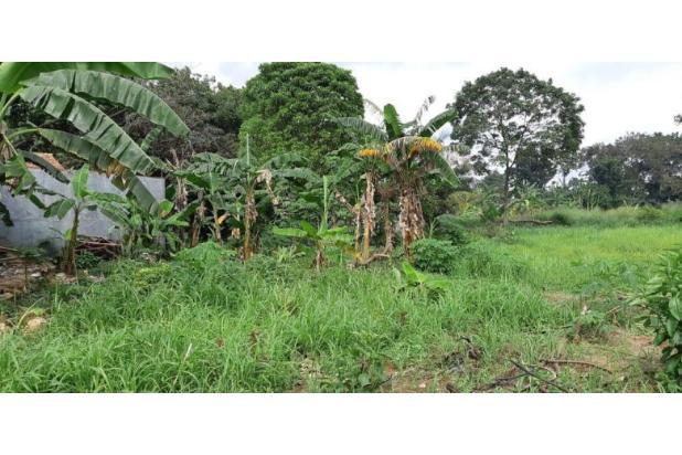 Rp8,62mily Tanah Dijual