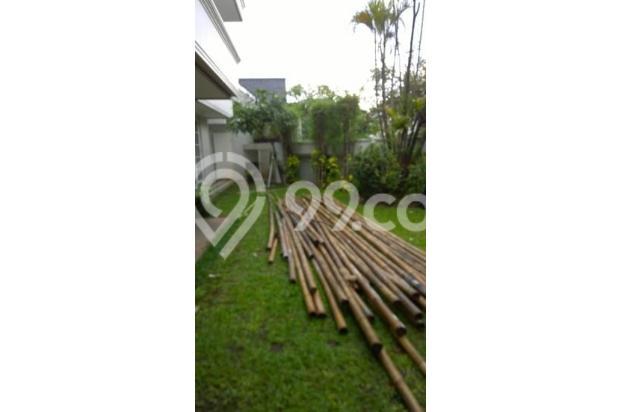 Disewa Rumah Nyaman di Jaya Mandala Raya Jakarta Selatan 16225358