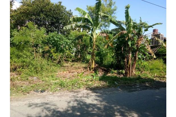 Tanah LT 198 M2, di Wirokerten Bantul, Dekat RS Rajawali Citra 16048555