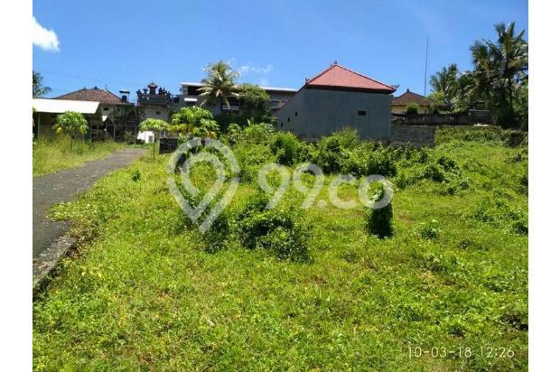 Rumah Baru Sangat Murah di Mengwi Dekat Taman Ayun 16893645