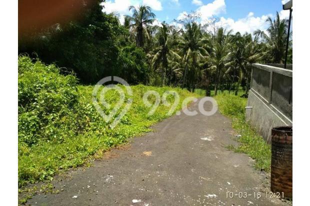 Rumah Baru Sangat Murah di Mengwi Dekat Taman Ayun 16893647