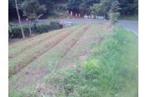 Tanah di jual di pinggir jalan provinsi,lokasi di Cimaung